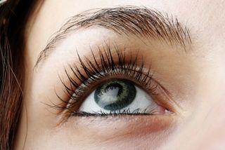 Eyelashes]